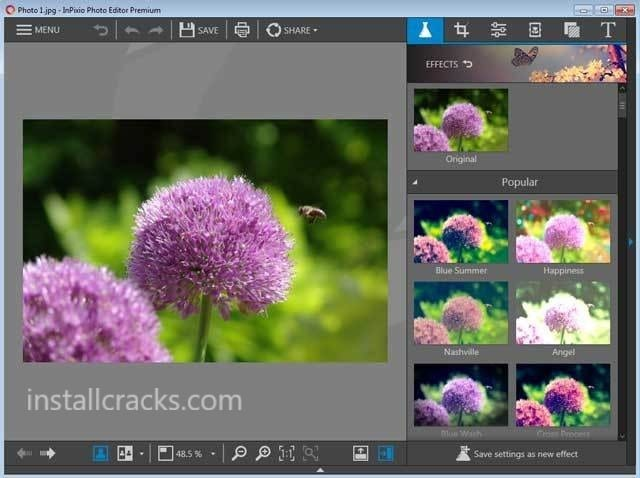 InPixio Photo Clip 9 Professional 2019 Crack + Serial Key Download